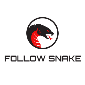 Buy Instagram Followers - 100% Real & Instant - Followsnake